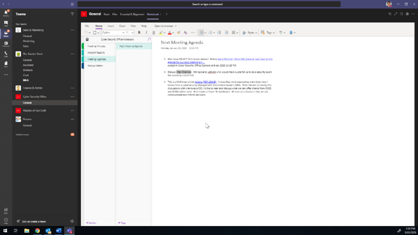 Screenshot of a OneNote Notebook tab within a project team's Teams Channel