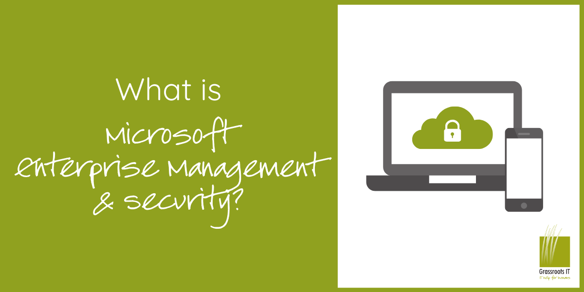 What is Microsoft Enterprise Management and Security?
